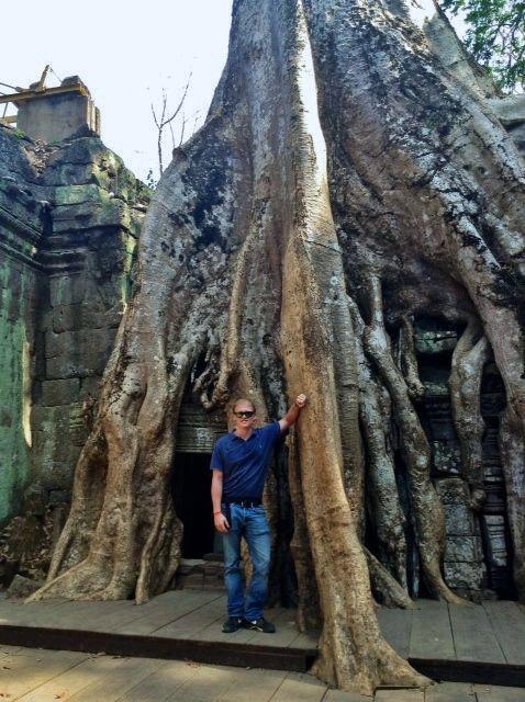 Tree At Angkor Wat