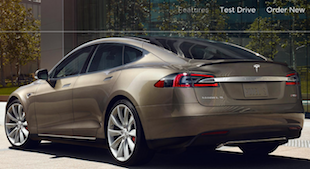 Tesla Purchase Website